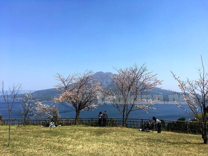 桜島が一番綺麗に見える磯山公園
