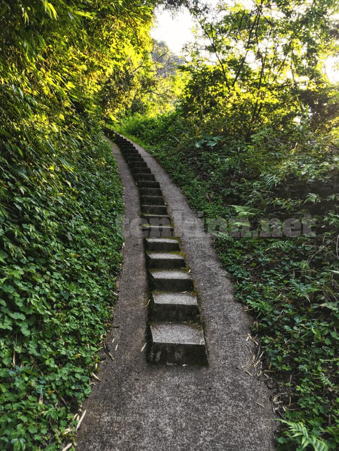 雄川の滝は、どういう道を歩いて行くの?
