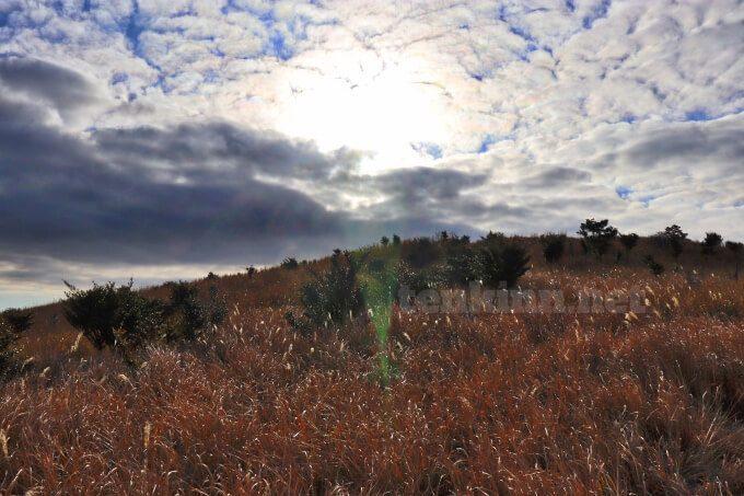 神降臨!!神秘的な光が!!鹿児島観光におすすめ狐ヶ丘高原