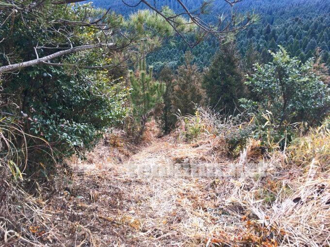 鹿児島の観光地、狐ヶ丘高原、遊歩道。どこを歩けば良いかわからないぐらい険しい