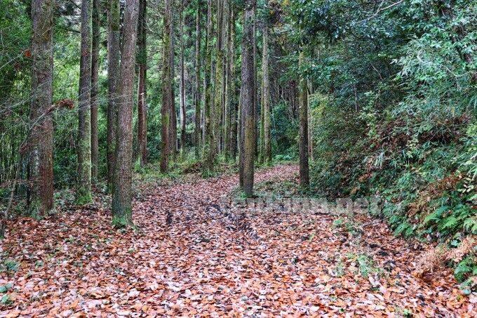長野滝は駐車してちょっと歩く