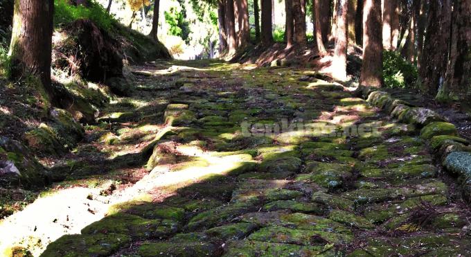 龍門司坂 鹿児島