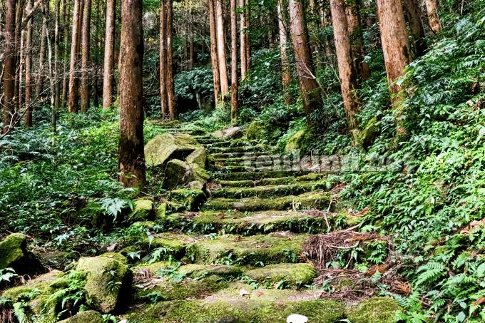 掛橋坂は、西郷どんの撮影地