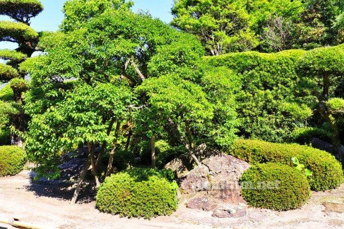 6知覧武家屋敷の佐多直忠庭園が見たい!