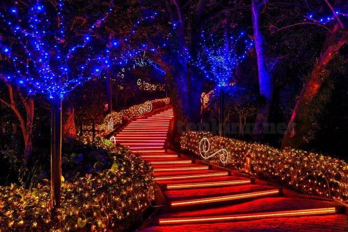 鹿児島の一番綺麗なイルミネーションは、城山ホテル鹿児島