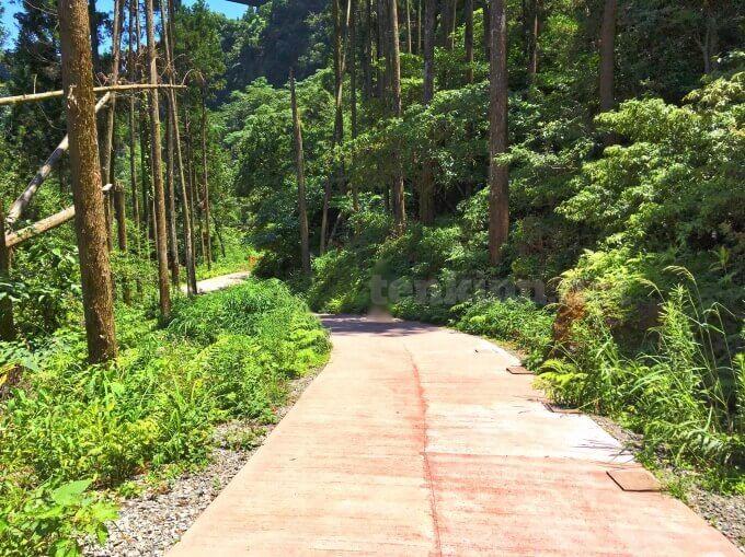 雄川の滝の道がアスファルト舗装になって歩きやすくなっていた!