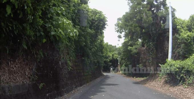 グーグルマップのナビ通りに鰻温泉に行くと、狭い道を進むことになるよ!