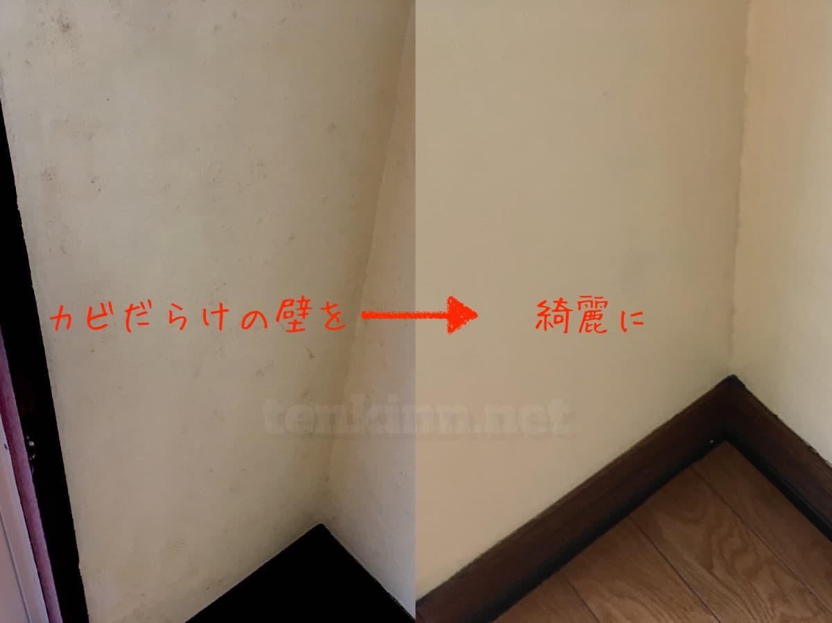 宿舎のカビだらけの壁を綺麗にする