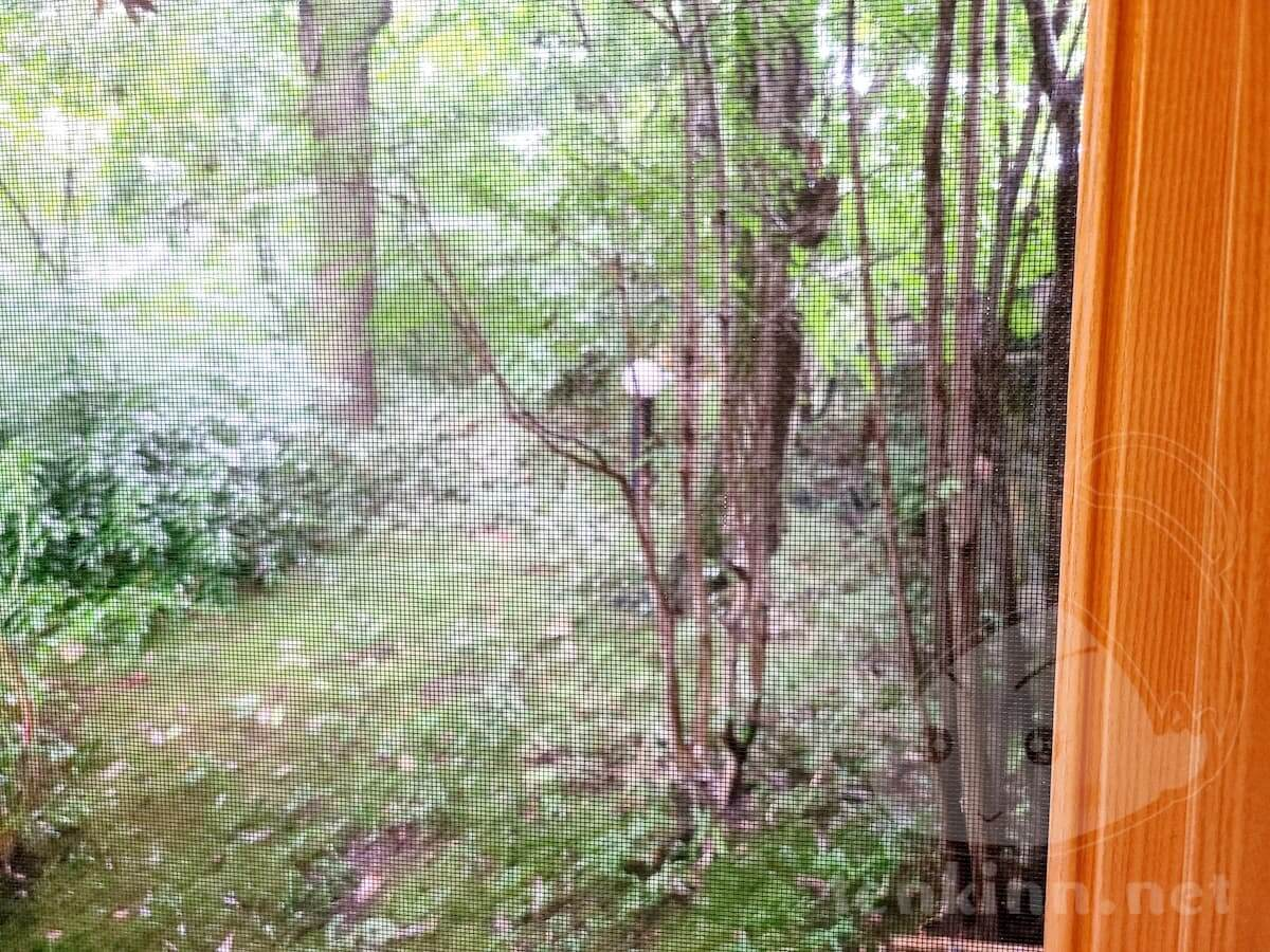 由布院玉の湯、虫対策網戸はある